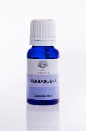 Hierba Buena - Mentha spicata